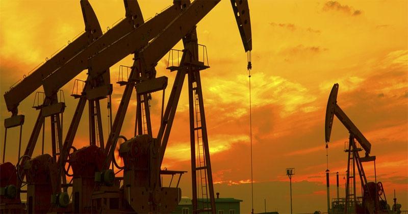 cruide oil _1