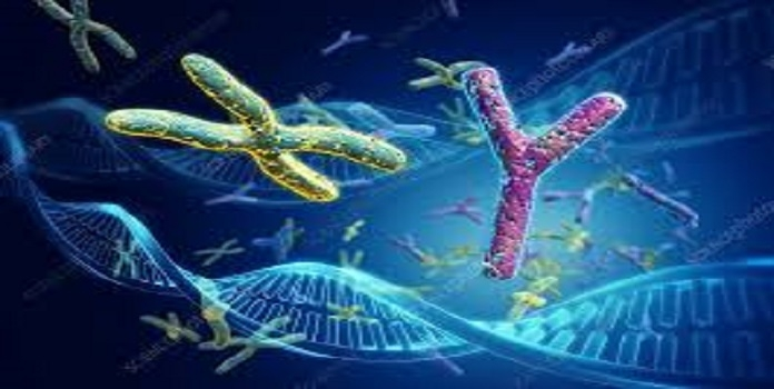 article on DNA and AryaVa